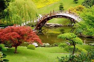 طراحی باغ،تاریخچه باغ سازی در ایران و اروپا،گیاهان مورد نیاز در ساخت باغ،مدل باغ های اروپایی،باغ های آسیایی،تحقیق در مورد باغ،بهترین باغ ها،آموزش ساخت باغ،سبک باغ سازی اروپا،بهترین باغ های جهان،مقاله در خصوص باغ،گیاهان و گلهای مناسب باغ،